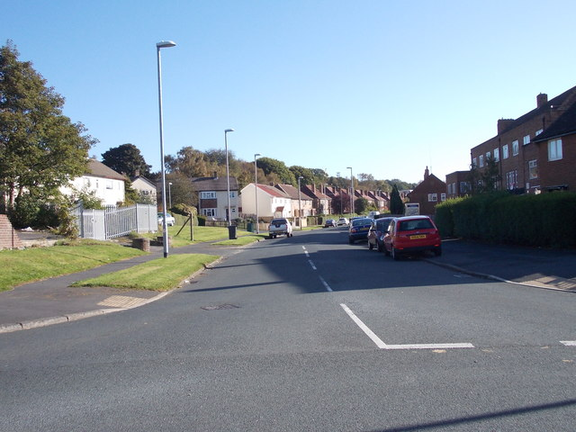 Lingfield Drive - viewed from Lingfield Hill