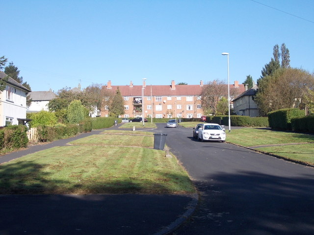 Lingfield Gardens - Lingfield Road