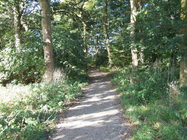 Tynwald Woods - Tynwald Drive