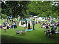 SJ8969 : Picnicking on the lawn by Peter Turner
