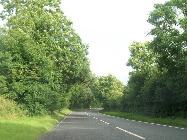 Treelined section of the Moorlough Road (A34)