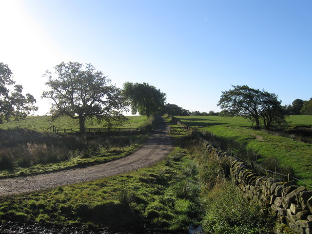 Track  to East Shaftoe Hall