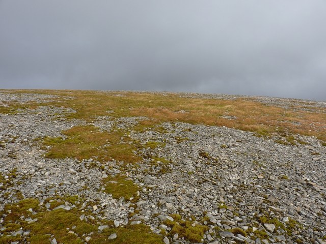 Bare ground and sparse vegetation near the summit