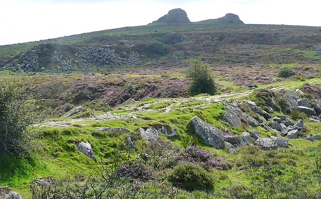 Haytor tramway, quarry and rocks