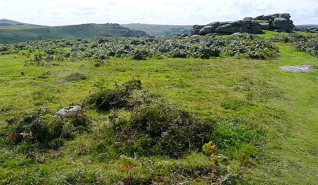 Smallcombe Rocks