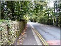 SJ9694 : Mottram Road by Gerald England