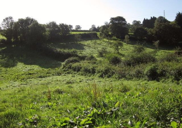 Fields at North Whilborough