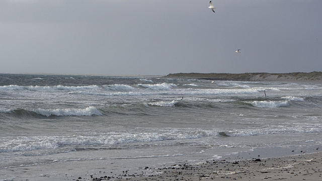 Windswept  South Uist