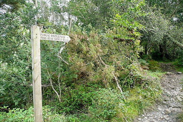 Bridleway to road near Yarner Wells