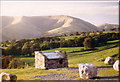 SD6991 : Howgill Fell by Sheena Pawson