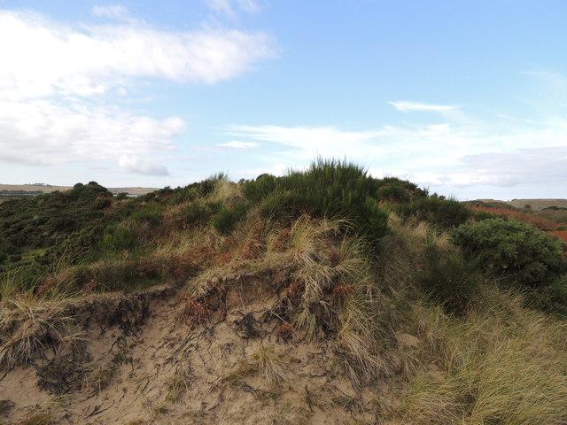 Sand Dune near Clayshant