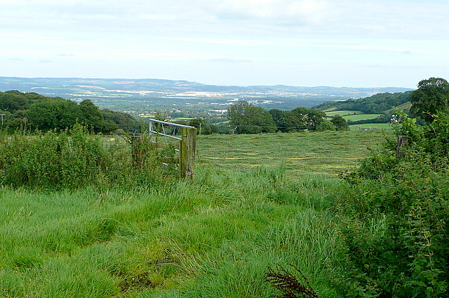 View near Yarner Wood