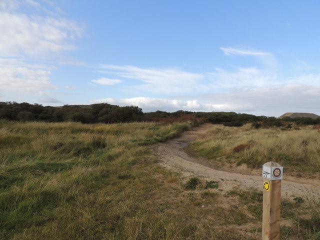 Track into Clayshant Quarry