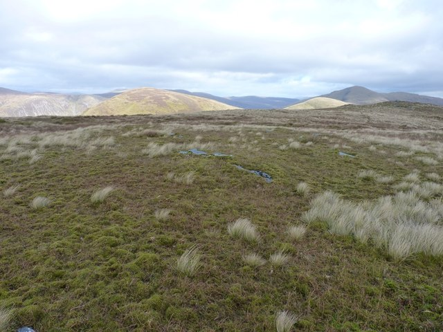 The grassy summit area of Meall Phubuill