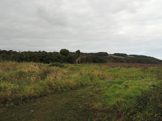 Old Ruin near Kirkcolm
