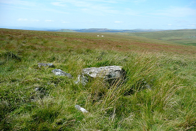 Cairn and cist above Langcombe Brook