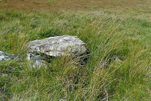 Cist above Langcombe Brook