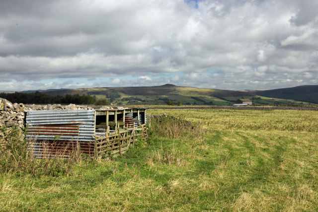 Sheltered sheep pens