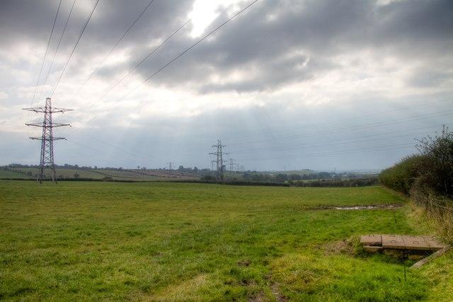 Field of Pylons