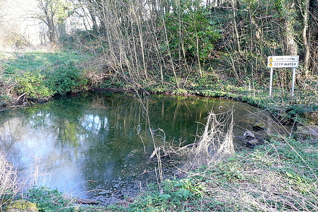Pond near Brecon School
