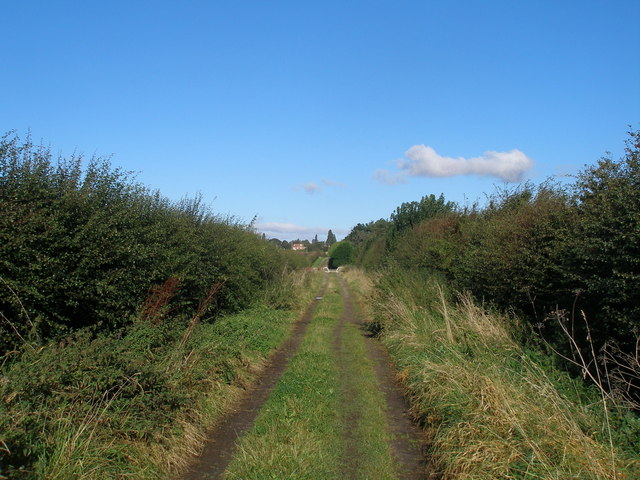 Bridleway north of  Burton Hall bridge