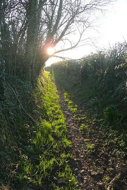 Bridleway towards Slwch