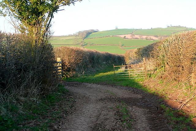 Bridleway from Slwch