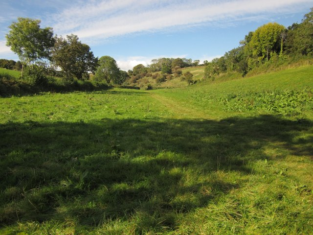 Meadow, Cockington valley