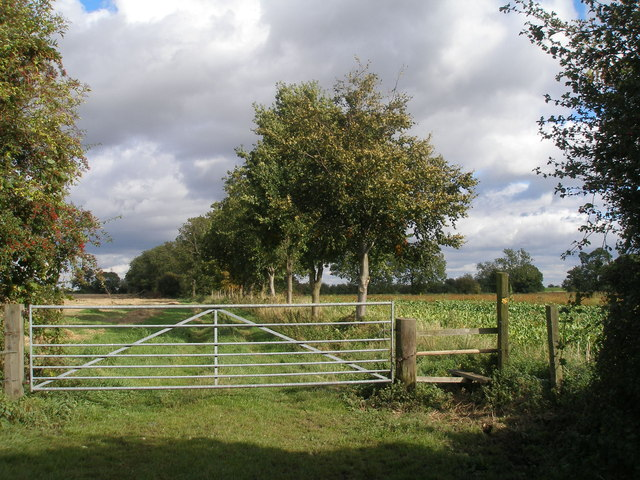 Footpath at East Ings
