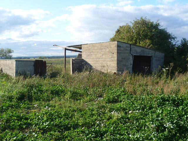 Subsidence on Morton Fen