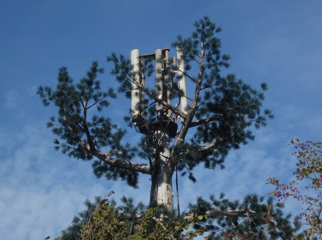 Mobile Phone mast, Nut Bush Lane
