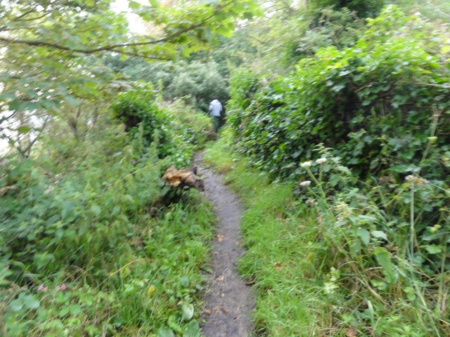 Shorncliffe, Public Footpath No. HF56