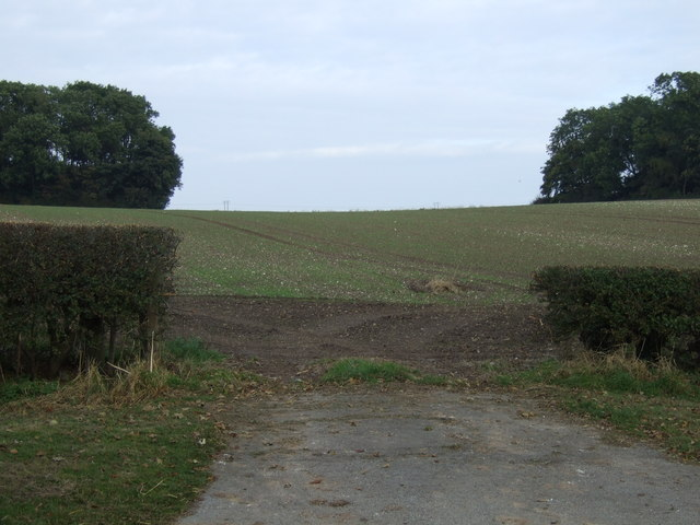 Field entrance off the A614
