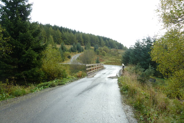 Forestry road and bridge over Trima Water