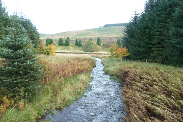 Nether Dalgliesh Burn