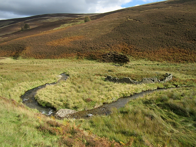 A meander in the Glensax Burn