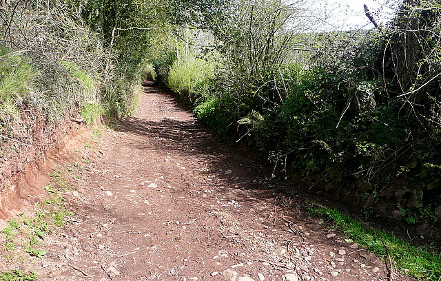 Byway onto Wootton Common