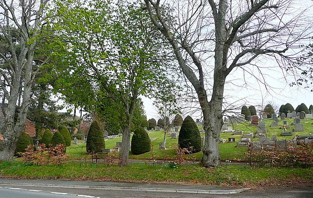 Woodcombe cemetery