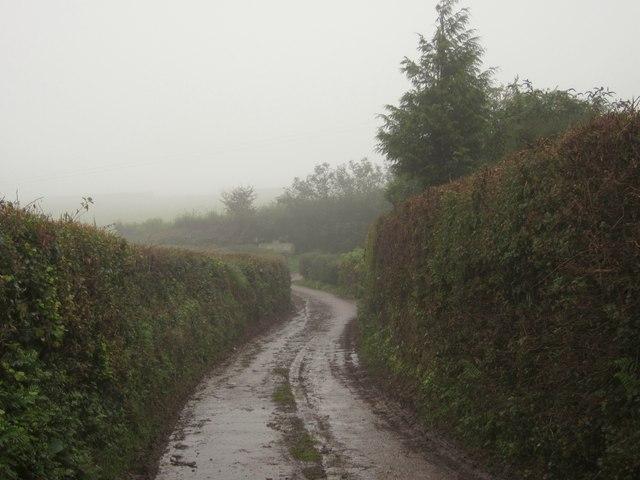 Gogwell Lane