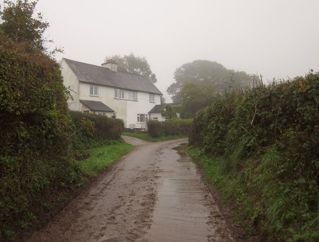 Houses on Gogwell Lane