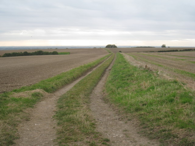Bridleway to Risby Manor Farm