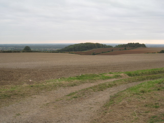 View towards Bedlam Plantation