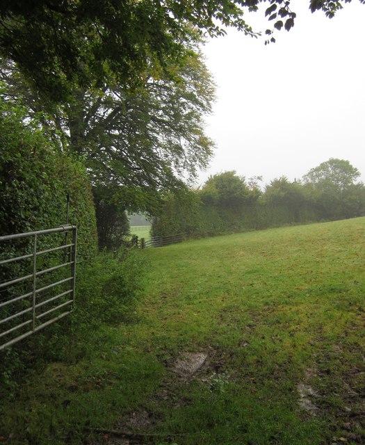 Bridleway at Shute Farm