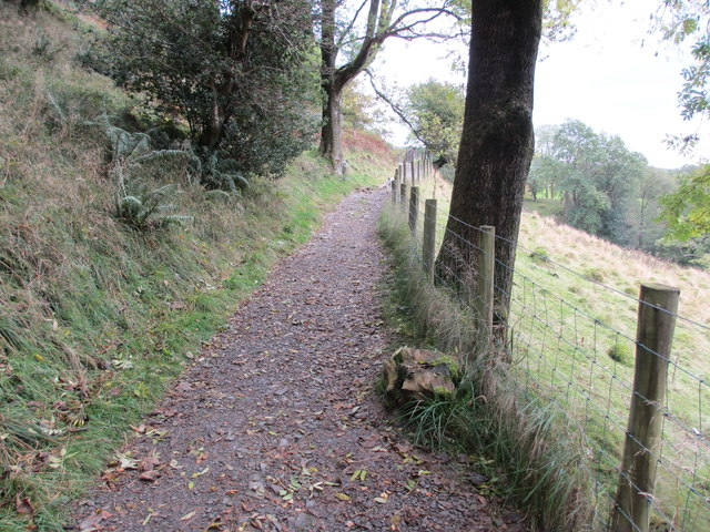Track at edge of Skelghyll Wood