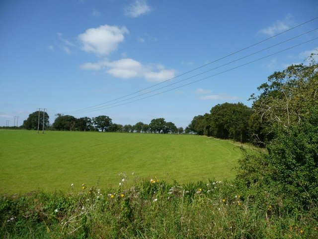 Overhead wires crossing a field, north of Lock 38
