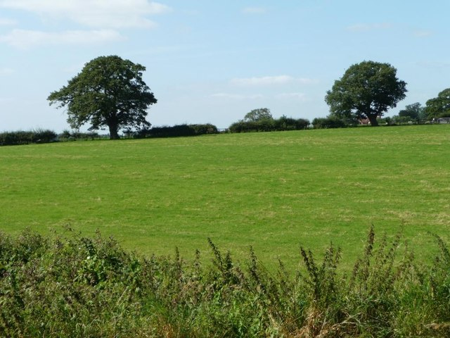 Worcestershire pasture