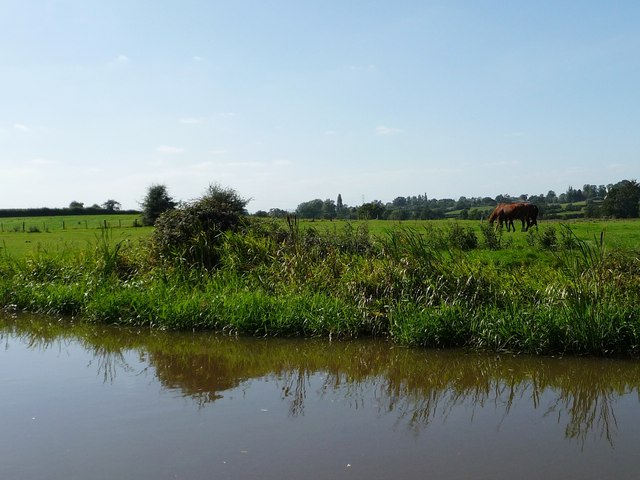 Canalside grazing land, near Stoke Pound