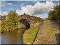 SD8810 : Bridge#65, Rochdale Canal by David Dixon