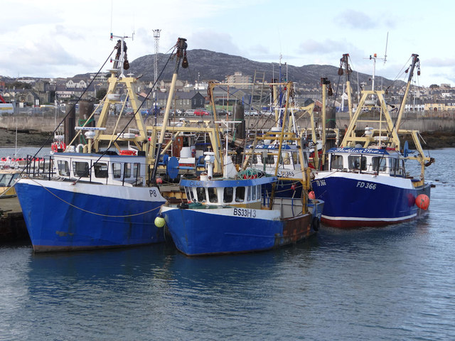 The fish dock, Holyhead