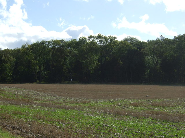 Farmland and Newell Wood